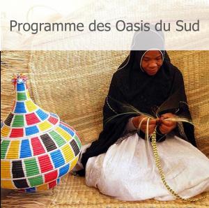 Programme des Oasis du Sud